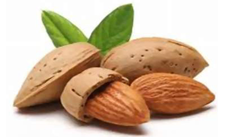 almonds may help you in weight loss